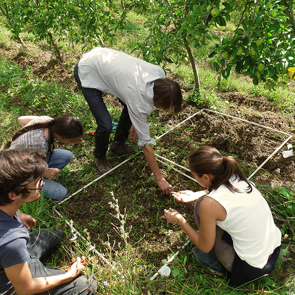Agroecology and Resource Management