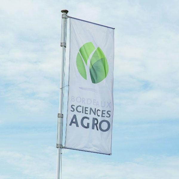 Associate Professor Viticulture position at Bordeaux Sciences Agro – ISVV
